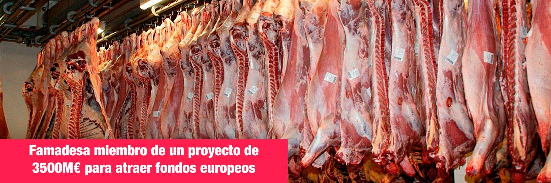 portada-blog-famadesa-miembro-proyecto-de-fondos-europeos